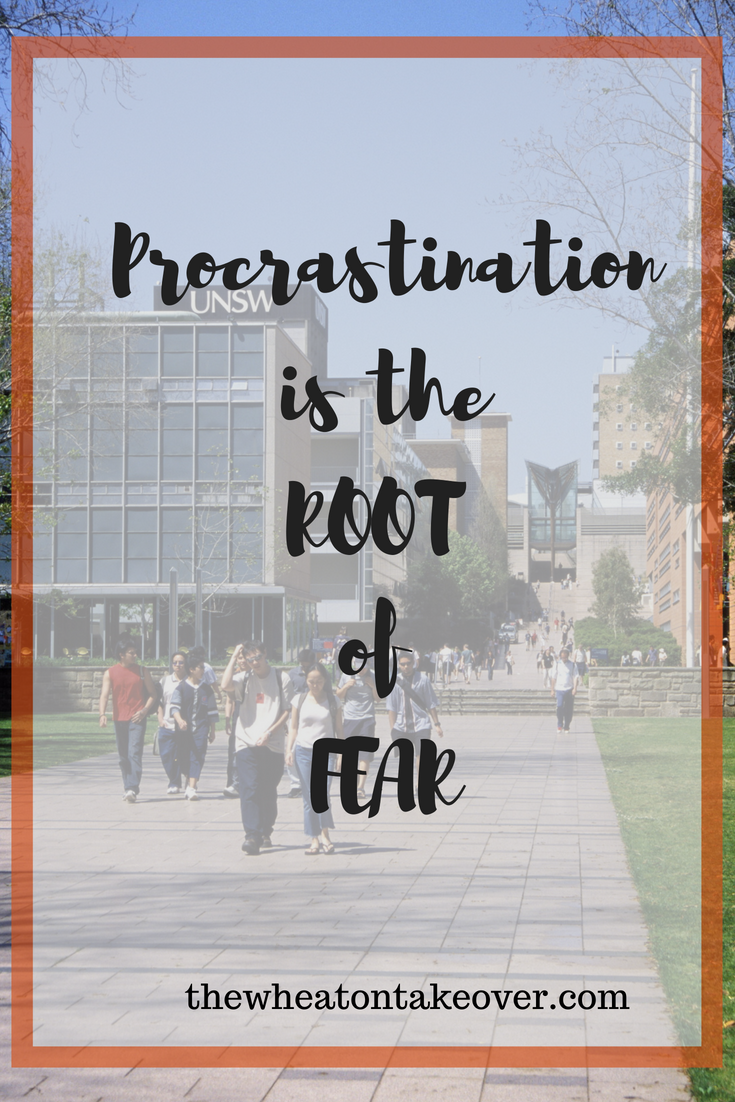 Procrastination is the Root of Fear - Procrastination is the root of fear. We all have the same 24 hours in a day. We can take our lives back by planning better to manage our time more effectively to avoid procrastination.